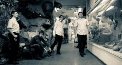 Avignon Quintet - Wretched Heart