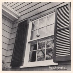 Beach Fossils What a Pleasure 250x250 Top EP 2011