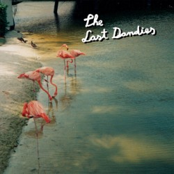 The Last Dandies - We Are Monsters - Liar - Summer