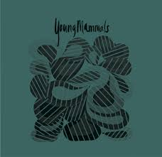 Young Mammals - Build A House