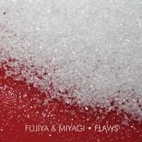 Fujiya & Miyagi - Flaws - Tetrahydrofolic Acid
