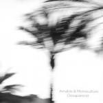 Amable & Monoculture – Desaparecer (2015)