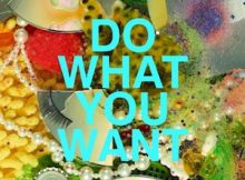 The Presets - Do What You Want