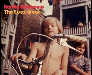 The Essex Green - Hardly Electronic