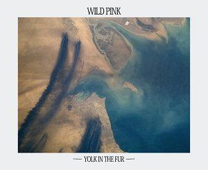 Wild Pink - Yolk In The Fur